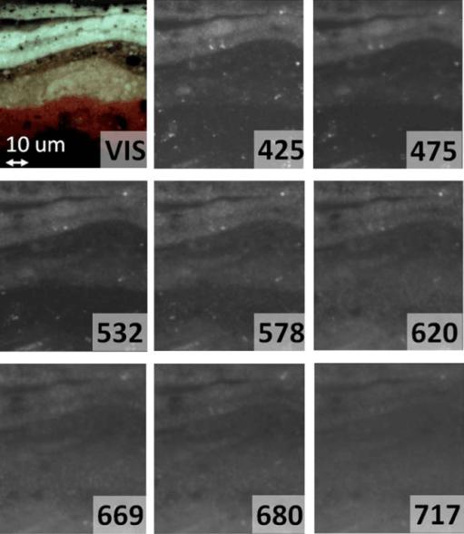 multispectral imaging stereo microscope