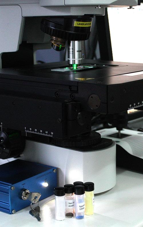 Raman Spectroscopy for Pigments Checker