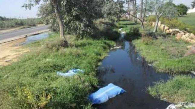 الثروة السمكية و حياة المواطنين بالداخلة تحت تهديد مياه الصرف الصحي!
