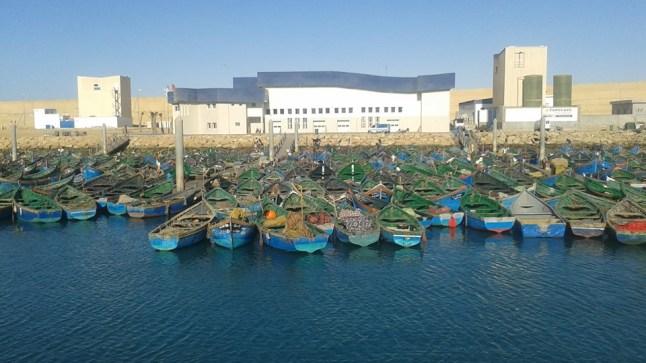 """هل يحول """"حبوها"""" ميناء بوجدور إلى مرفأ بيروت؟"""