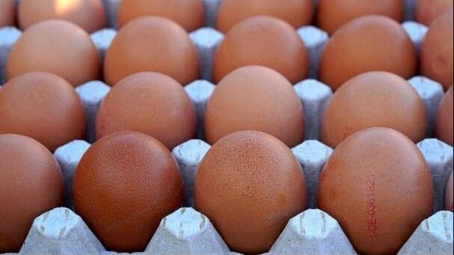 """بعد تنازل مشغلها البرلماني.. السراح المؤقت للعاملة المتهمة بـ""""سرقة 16 بيضة"""""""