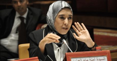 ماء العينين: وزير العدل رفض برمجة مشروع القانون الجنائي المحتجز بالبرلمان منذ 2016