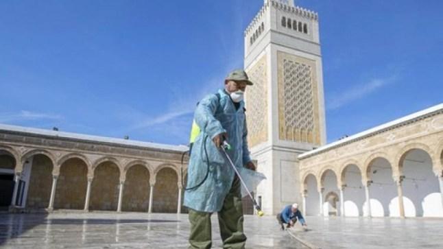وزارة الأوقاف تعلن عن بدء فتح المساجد المغلقة تدريجيا