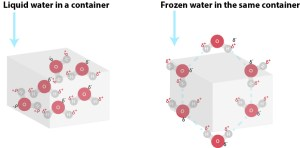 Notice that even though there are the same number of water molecules in both instances above, frozen water requires more space due to the space between the water atoms imposed by the hydrogen bonds. In the case of liquid water, the molecules are able to pack more tightly together into the same confined space.