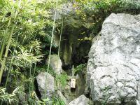 彦山竹林公園