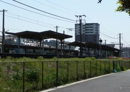JR幡生駅のチューリップ