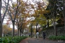 秋を探しに パークロード