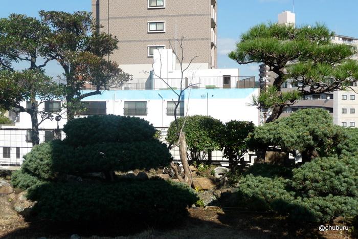 旧秋田商会ビルの屋上庭園一般公開に行ってきました。