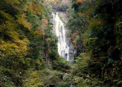 金田一耕助を巡る旅 その7八つ墓村の神庭の滝には登れないぞ。
