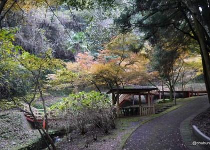 美祢市の水神公園の紅葉を見てきた。