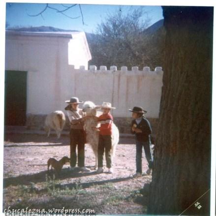 Niñas y llamas en la Posta de Hornillos (1984, veromendo)