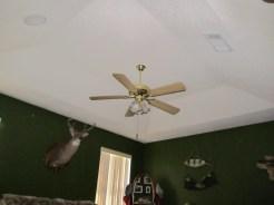 Trey Ceiling in Master