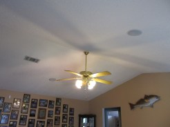 Volume Ceiling in Living Room