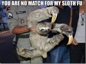 sloth-fu