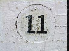 onze_11