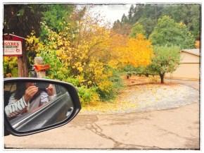 fall16_15