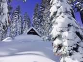 snow-winter1602