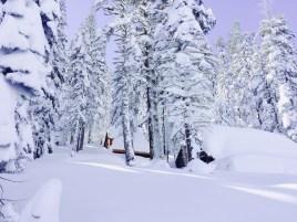 snow-winter1603