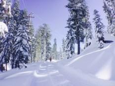 snow-winter1604