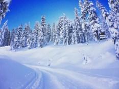 snow-winter1610