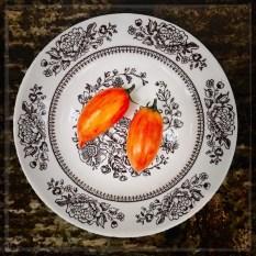 tomatos17_05