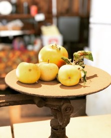apples_and_things04
