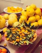 citrus-galore2