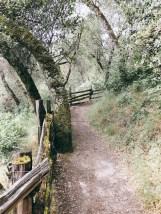 coloma-walk_02