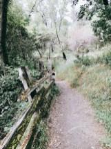 coloma-walk_03