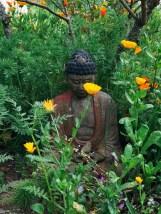 zen-garden_09