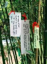 zen-garden_12