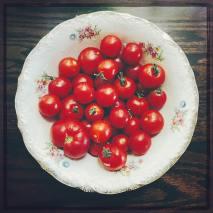 tomatoes18_2