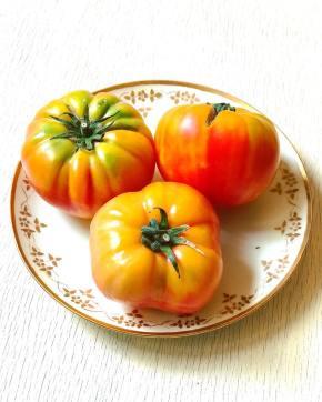 tomatoes18_5