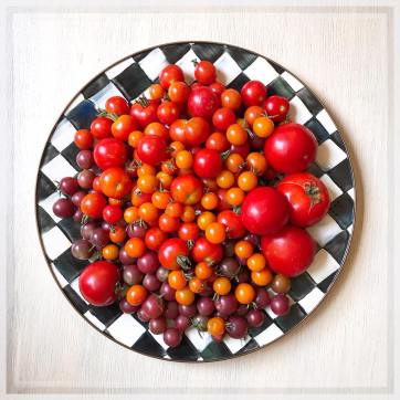 tomatoes18_6