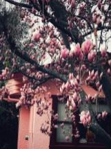 winter_19_30