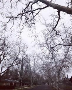 winter_19_69