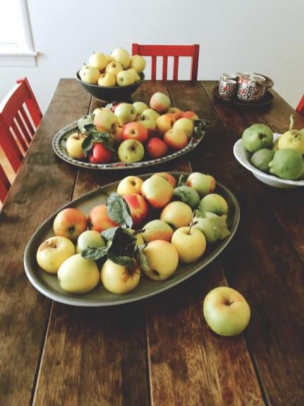 apples19_3