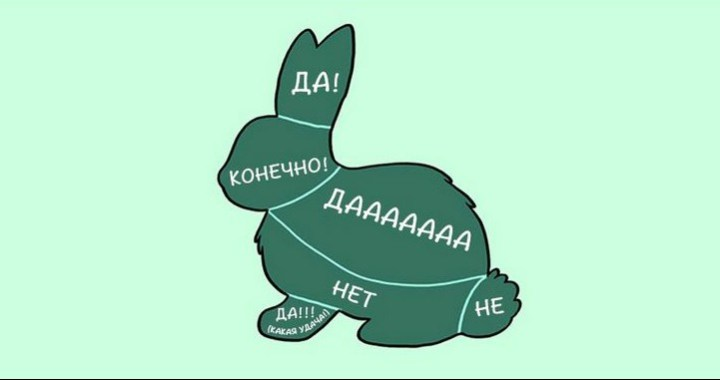 kak-nuzhno-gladit-zhivotnyx_2_1