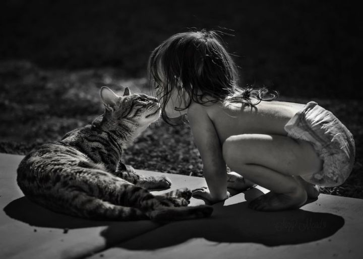 children-cat-playing-photography-12_result