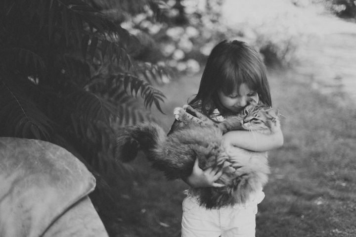 children-cat-playing-photography-16_result