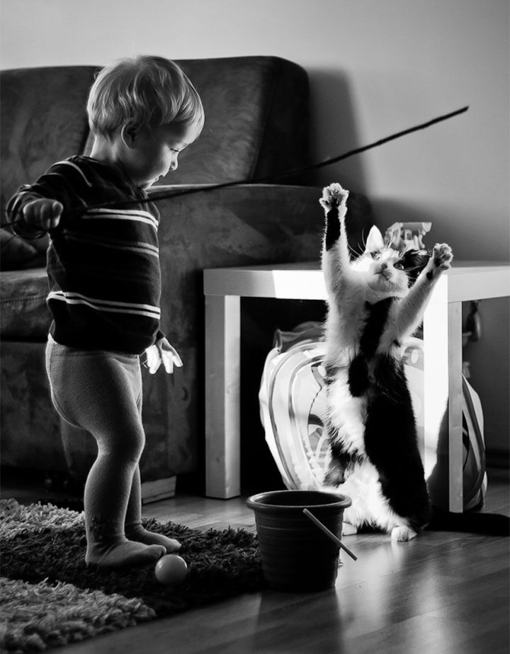 children-cat-playing-photography-2_result