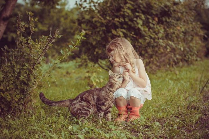 children-cat-playing-photography-3_result