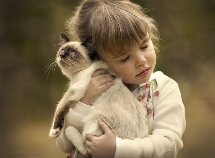 children-cat-playing-photography-9_result
