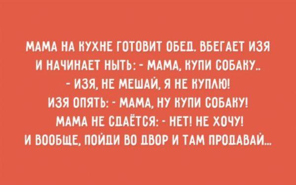 4429502_08b5a104_result