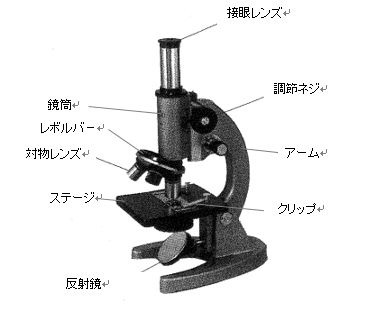 名称 顕微鏡 1.顕微鏡の各部の名称と働き