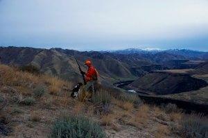 Idaho Big Chukar Country