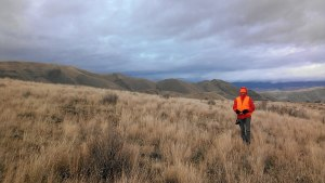 Chukar hunting near Brownlee