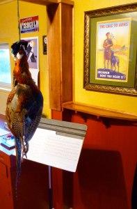 pheasant hanging