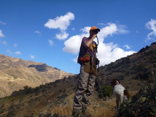 Chukar habitat is in good shape