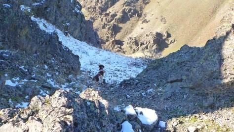 Typical chukar terrain